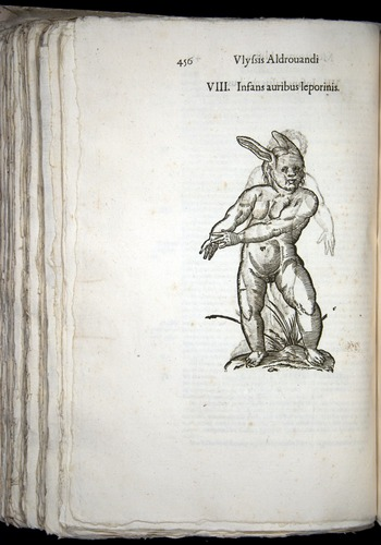 Image of Aldrovandi-1570-0456