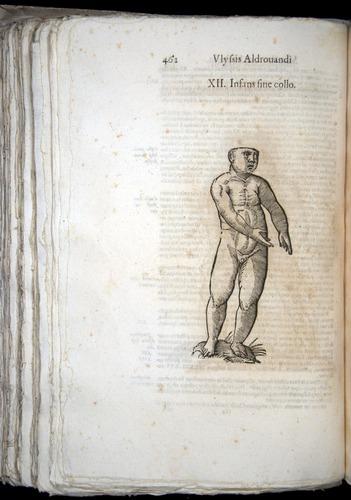 Image of Aldrovandi-1570-0462