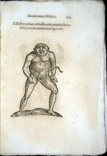 Image of Aldrovandi-1570-0463