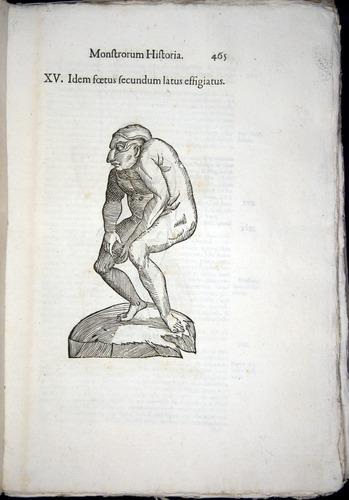 Image of Aldrovandi-1570-0465