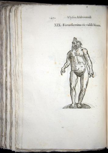 Image of Aldrovandi-1570-0470