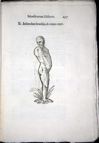Image of Aldrovandi-1570-0477