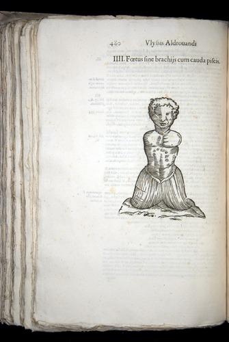 Image of Aldrovandi-1570-0480