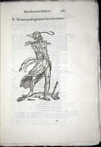 Image of Aldrovandi-1570-0481