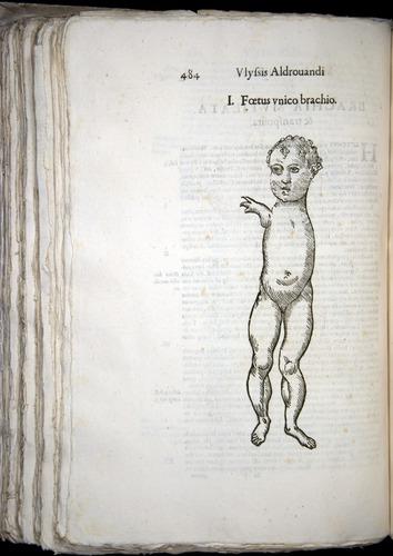 Image of Aldrovandi-1570-0484