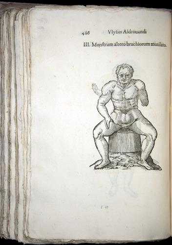 Image of Aldrovandi-1570-0486