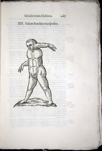Image of Aldrovandi-1570-0487