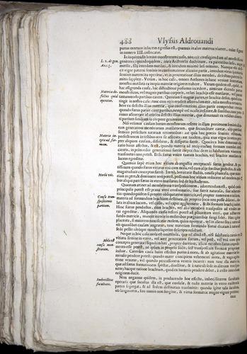 Image of Aldrovandi-1570-0488