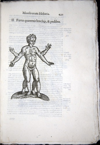 Image of Aldrovandi-1570-0491