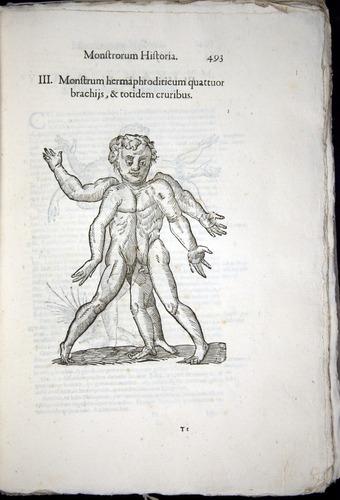 Image of Aldrovandi-1570-0493