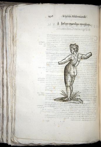 Image of Aldrovandi-1570-0496