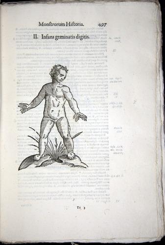 Image of Aldrovandi-1570-0497