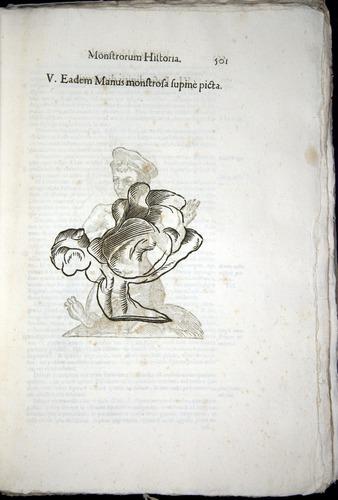Image of Aldrovandi-1570-0501