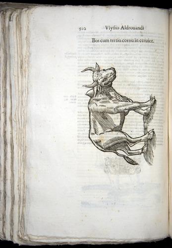 Image of Aldrovandi-1570-0510