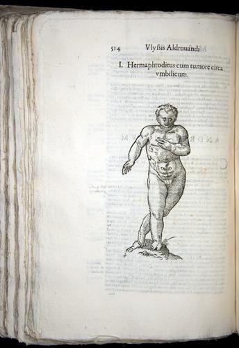 Image of Aldrovandi-1570-0514