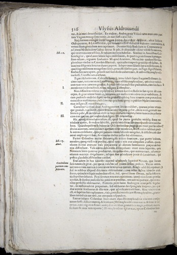 Image of Aldrovandi-1570-0516