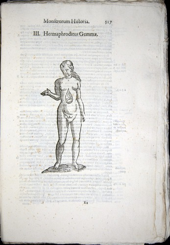 Image of Aldrovandi-1570-0517