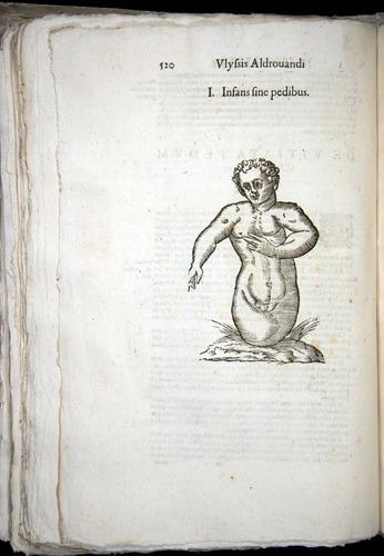 Image of Aldrovandi-1570-0520