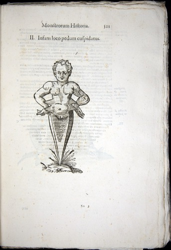 Image of Aldrovandi-1570-0521