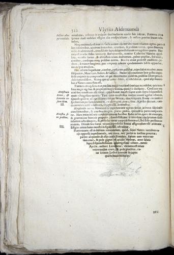 Image of Aldrovandi-1570-0522