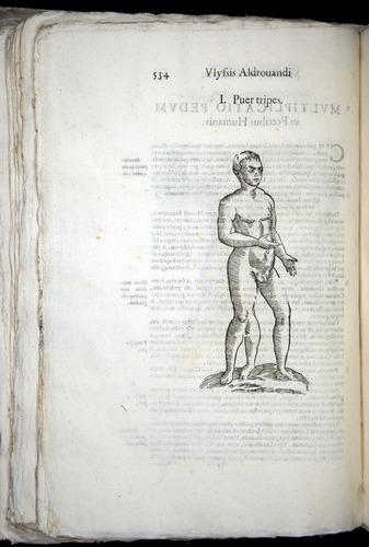 Image of Aldrovandi-1570-0534