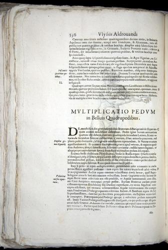 Image of Aldrovandi-1570-0536
