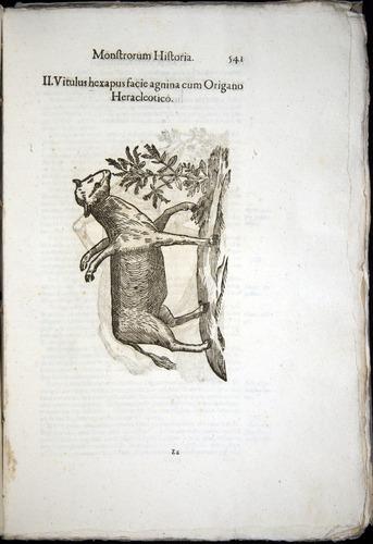 Image of Aldrovandi-1570-0541