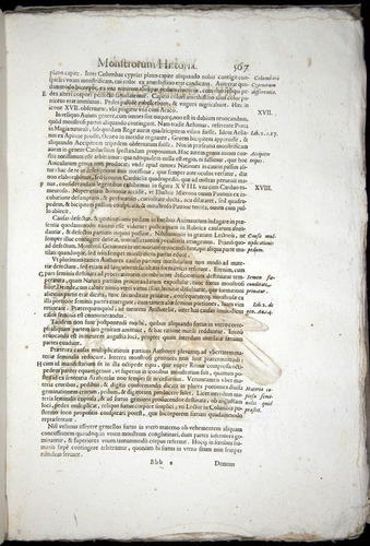 Image of Aldrovandi-1570-0567