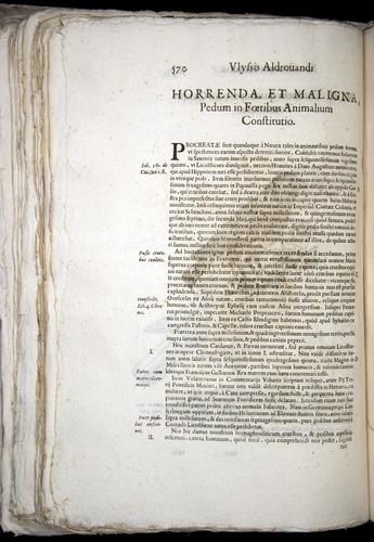 Image of Aldrovandi-1570-0570