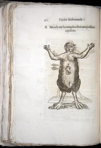 Image of Aldrovandi-1570-0572