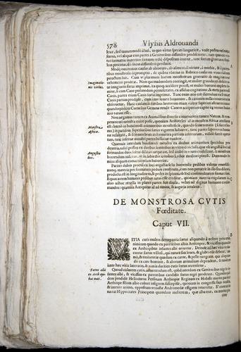 Image of Aldrovandi-1570-0578
