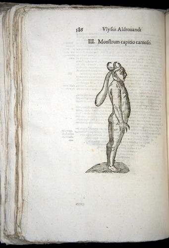 Image of Aldrovandi-1570-0586