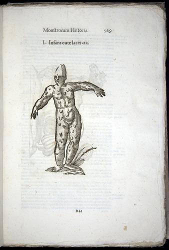 Image of Aldrovandi-1570-0589