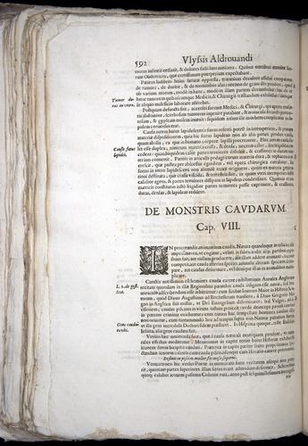 Image of Aldrovandi-1570-0592