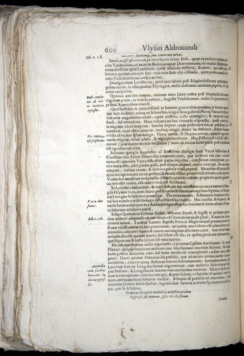 Image of Aldrovandi-1570-0600