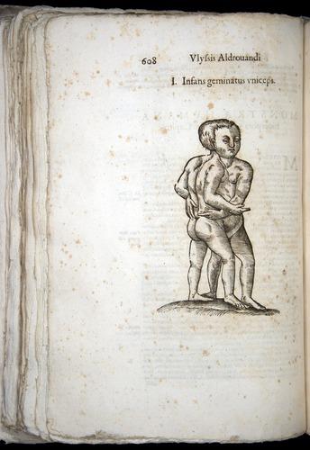 Image of Aldrovandi-1570-0608