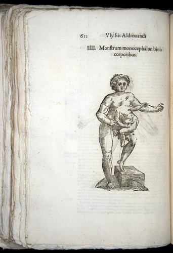 Image of Aldrovandi-1570-0612