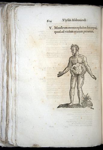 Image of Aldrovandi-1570-0614