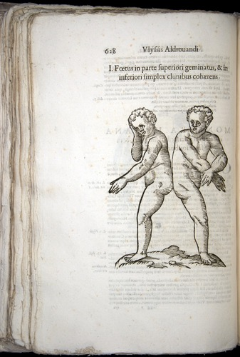 Image of Aldrovandi-1570-0628