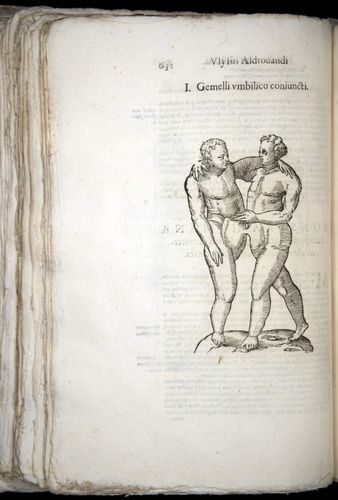 Image of Aldrovandi-1570-0632