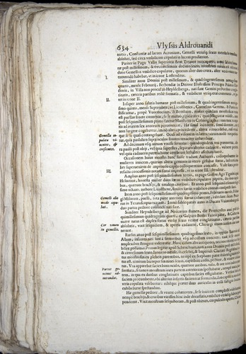 Image of Aldrovandi-1570-0634
