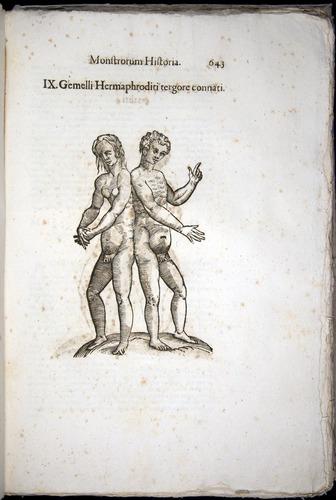 Image of Aldrovandi-1570-0643
