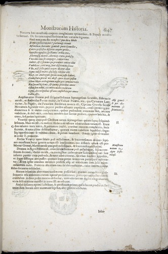 Image of Aldrovandi-1570-0647