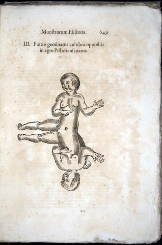 Image of Aldrovandi-1570-0649