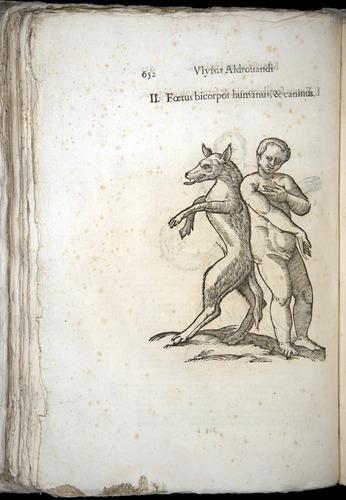 Image of Aldrovandi-1570-0652