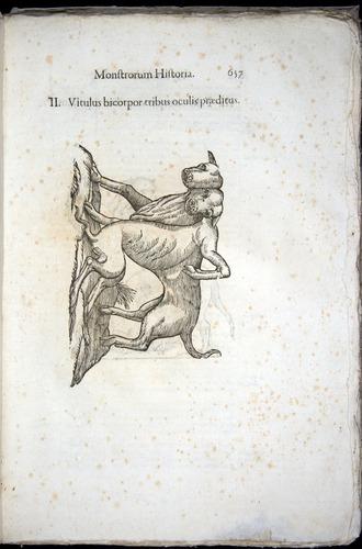 Image of Aldrovandi-1570-0657