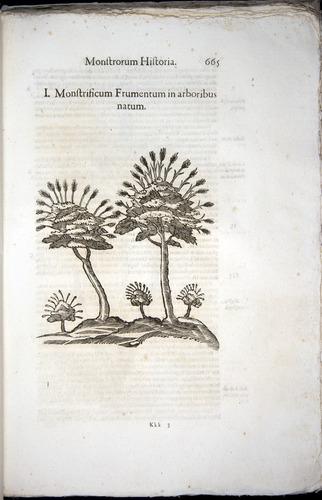 Image of Aldrovandi-1570-0665