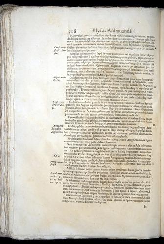 Image of Aldrovandi-1570-0708