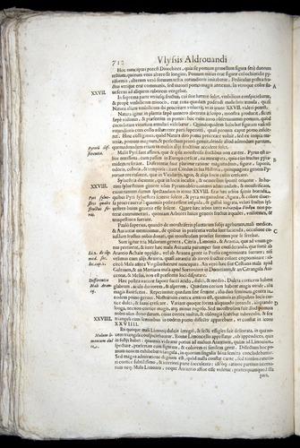 Image of Aldrovandi-1570-0712