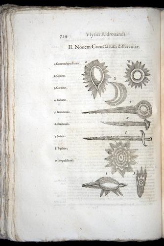 Image of Aldrovandi-1570-0724